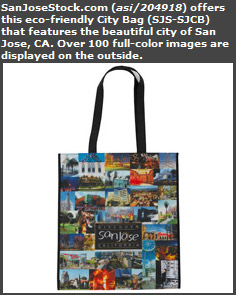 Eco-Friendly City Bag