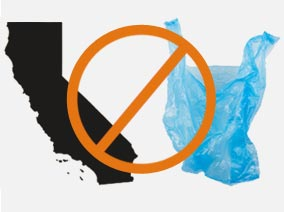 California became the first state in the U.S. to ban single-use plastic bags, after its legislature passed the measure on Friday.