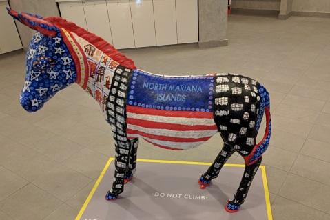 DNC Donkey Scavenger Hunt Includes T-shirt Prize